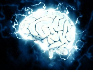 An Ideal Startup Team Excels At Whole-Brain Thinking
